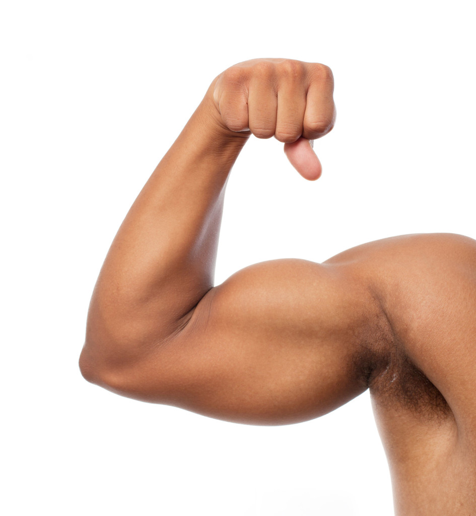 muscle and biceps Give me 30 days and i'll give you bigger and stronger biceps guaranteed  everything you need is right here in this article.