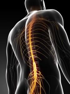 Spine Nerve Pain