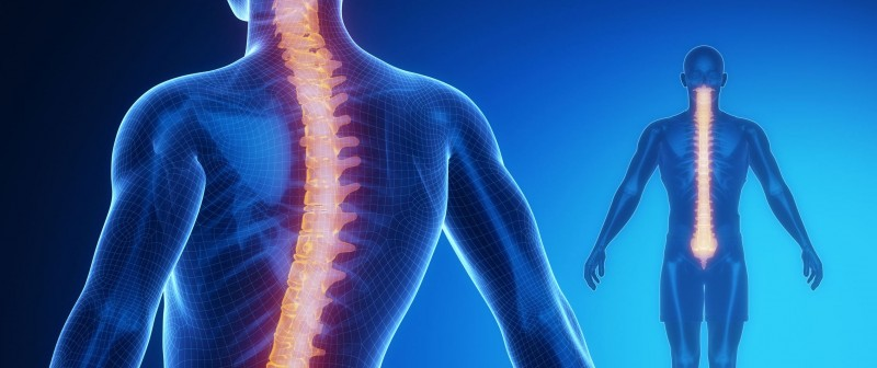 slipped spinal disc vs rhomboid muscle pain stillwater spine doctor