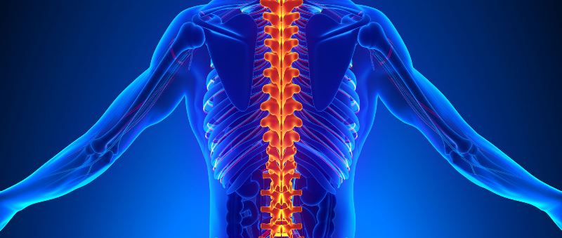 Thoracic Spine Fractures Causes Symptoms Treatment