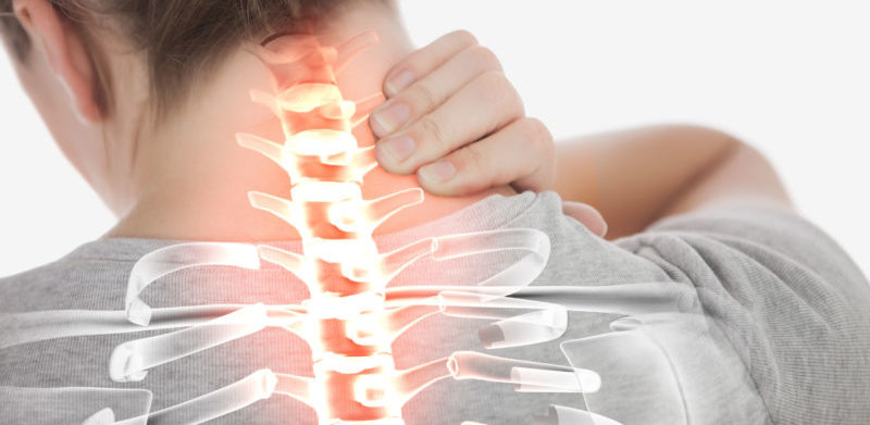 Spinal Cord Softening