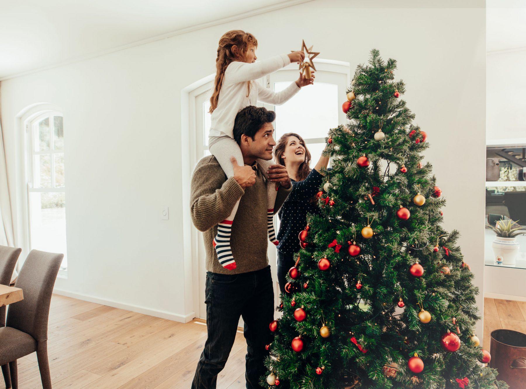 Christmas Tree Spine